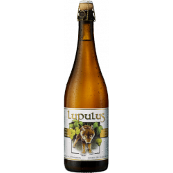 LUPULUS TRIPLE BLONDE 6*75CL - VP
